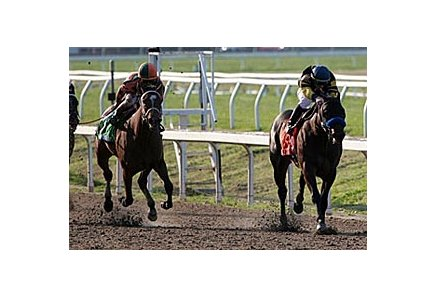 Indian Blessing (right) and Proud Spell will meet again in the Fair Grounds Oaks.