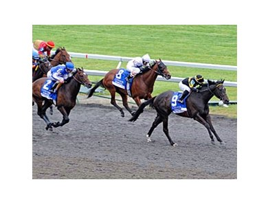 "All Squared Away comes home strong to win the Coolmore Lexington.<br><a target=""blank"" href=""http://photos.bloodhorse.com/AtTheRaces-1/at-the-races-2012/22274956_jFd5jM#!i=1805563143&k=fw6KK3r"">Order This Photo</a>"