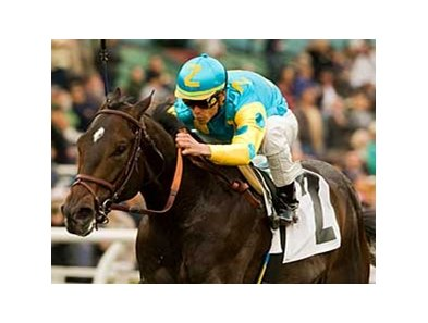 Pioneerof the Nile faces 6 in the San Felipe.