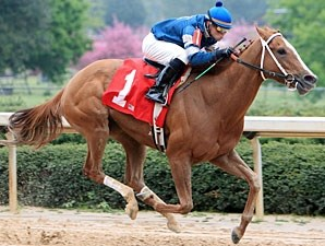 Cosmo Girl wins 2011 The Carousel Stakes.