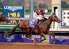 "Untapable takes on 5 in the Azeri.<br><a target=""blank"" href=""http://photos.bloodhorse.com/BreedersCup/2014-Breeders-Cup/Distaff/i-fHmhk5m"">Order This Photo</a>"