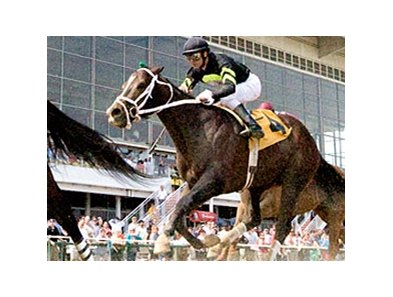 Cognac Kisses was second in the Allen's Prospect Stakes at Pimlico April 19.
