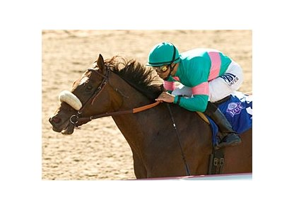 "Tiago will stand at Adena Springs after his racing career has ended.<br><a target=""blank"" href=""http://www.bloodhorse.com/horse-racing/photo-store?ref=http%3A%2F%2Fpictopia.com%2Fperl%2Fgal%3Fprovider_id%3D368%26ptp_photo_id%3D1729429%26ref%3Dstory"">Order This Photo</a>"
