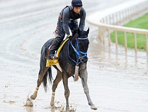 Decisive Moment working at Churchill Downs 5/2/2011.