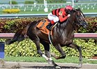 "Weekend Hideaway comes home strong to win the Florida Sunshine Millions Sprint.<br><a target=""blank"" href=""http://photos.bloodhorse.com/AtTheRaces-1/At-the-Races-2015/i-sdFcbNS"">Order This Photo</a>"