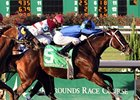 Thanksgiving Handicap winner Stormin Baghdad tries turf in the Bonapaw.
