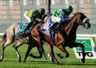 Winchester Lone U.S. Hope in Hong Kong Races