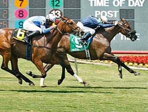 Wasted Tears wins the 2010 Ouija Board.