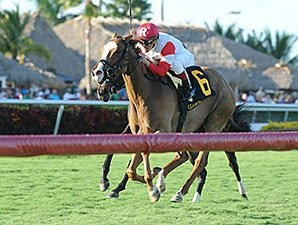 Deanaallen'skitten wins the 2013 Tiara Stakes.
