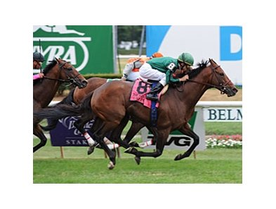 "Gio Ponti won the Man o' War in 2009 and 2010 (shown).<br><a target=""blank"" href=""http://www.bloodhorse.com/horse-racing/photo-store?ref=http%3A%2F%2Fpictopia.com%2Fperl%2Fgal%3Fprovider_id%3D368%26ptp_photo_id%3D9102014%26ref%3Dstory"">Order This Photo</a>"