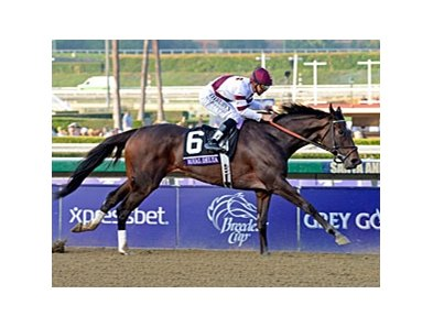 "Royal Delta<br><a target=""blank"" href=""http://photos.bloodhorse.com/BreedersCup/2012-Breeders-Cup/Ladies-Classic/26130180_8NMncD#!i=2191659902&k=7FTtcr6"">Order This Photo</a>"