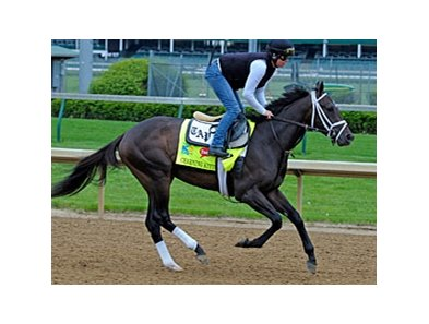 "Charming Kitten<br><a target=""blank"" href=""http://photos.bloodhorse.com/TripleCrown/2013-Triple-Crown/Kentucky-Derby-Workouts/29026796_jvcnn8#!i=2479768933&k=HgBFb3V"">Order This Photo</a>"