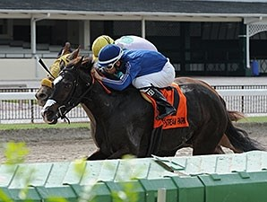 Swinger's Party wins the 2014 Millions Distaff Preview Stakes.