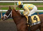 Sky High Lady won the 2013 River Memories Stakes.
