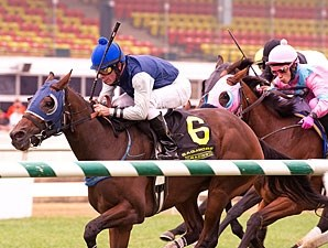 Pagan Priestess wins the 2012 Maryland Million Ladies.