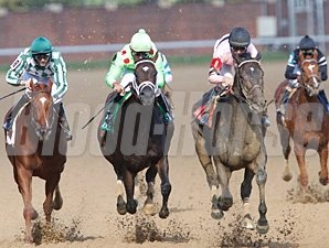 Sky Girl wins the 2013 Dogwood Stakes.