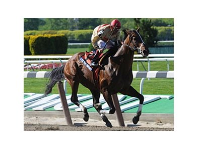 "Le Grand Cru pulls away in the Westchester. <br><a target=""blank"" href=""http://www.bloodhorse.com/horse-racing/photo-store?ref=http%3A%2F%2Fpictopia.com%2Fperl%2Fgal%3Fprovider_id%3D368%26ptp_photo_id%3D8937389%26ref%3Dstory"">Order This Photo</a>"