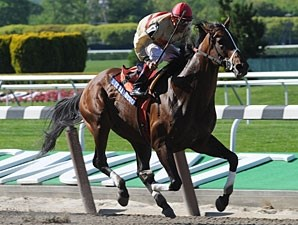 Le Grand Cru wins the 2010 Westchester.