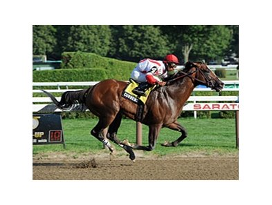 "Currency Swap<br><a target=""blank"" href=""http://photos.bloodhorse.com/AtTheRaces-1/at-the-races-2012/22274956_jFd5jM#!i=1994660017&k=hHWvdXs"">Order This Photo</a>"