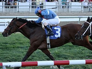 Old Bushmill wins the 2012 Dixie Poker Ace Stakes.