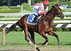 "Worstcasescenario will try to stay unbeaten in the Matron.<br><a target=""blank"" href=""http://www.bloodhorse.com/horse-racing/photo-store?ref=http%3A%2F%2Fpictopia.com%2Fperl%2Fgal%3Fprovider_id%3D368%26ptp_photo_id%3D8415446%26ref%3Dstory"">Order This Photo</a>"