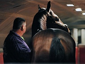 Strike The Moon, on the early morning Tex Sutton charter flight from Newburgh, NY to California and The Breeders' Cup.