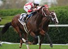 Animal Spirits wins the Bourbon Stakes.