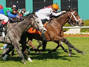 Doubles Partner wins the 2011 Tampa Bay Stakes.