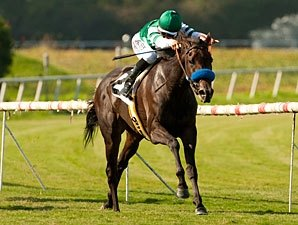 Lady of Shamrock Skims Rail in American Oaks