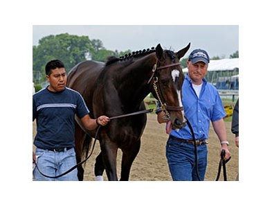 "Rachel Alexandra<br><a target=""blank"" href=""http://www.bloodhorse.com/horse-racing/photo-store?ref=http%3A%2F%2Fpictopia.com%2Fperl%2Fgal%3Fprovider_id%3D368%26ptp_photo_id%3D8111010%26ref%3Dstory"">Order This Photo</a>"