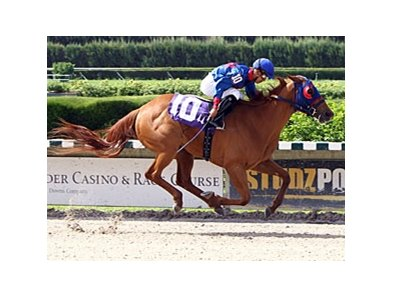 Wildcat Lily won the Leave Me Alone Stakes June 8 at Calder.