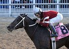 "Pyro, winning the Risen Star (gr.III)<br><a target=""blank"" href=""http://www.bloodhorse.com/horse-racing/photo-store?ref=http%3A%2F%2Fpictopia.com%2Fperl%2Fgal%3Fprovider_id%3D368%26ptp_photo_id%3DS454186%26ref%3Dstory"">Order This Photo</a>"