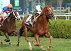 "Five Iron <br><a target=""blank"" href=""http://photos.bloodhorse.com/AtTheRaces-1/at-the-races-2013/27257665_QgCqdh#!i=2737621467&k=tcTTv4p"">Order This Photo</a>"