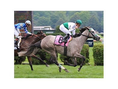 "Forever Together takes on 6 in the Canadian Stakes.<br><a target=""blank"" href=""http://www.bloodhorse.com/horse-racing/photo-store?ref=http%3A%2F%2Fpictopia.com%2Fperl%2Fgal%3Fprovider_id%3D368%26ptp_photo_id%3D5274682%26ref%3Dstory"">Order This Photo</a>"