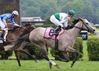 "2008 Diana winner Forever Together tries for a repeat in the 2009 version. <br><a target=""blank"" href=""http://www.bloodhorse.com/horse-racing/photo-store?ref=http%3A%2F%2Fpictopia.com%2Fperl%2Fgal%3Fprovider_id%3D368%26ptp_photo_id%3D5274682%26ref%3Dstory"">Order This Photo</a>"