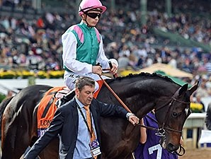 Flintshire before the Breeders' Cup Turf.