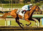 "Casino Drive at Santa Anita Park <br><a target=""blank"" href=""http://www.bloodhorse.com/horse-racing/photo-store?ref=http%3A%2F%2Fpictopia.com%2Fperl%2Fgal%3Fprovider_id%3D368%26ptp_photo_id%3D6294744%0D%0A%26ref%3Dstory"">Order This Photo</a>"