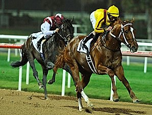 Curlin Romps in Dubai