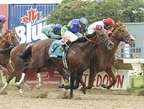 Pleasant Prince wins the 2010 Ohio Derby.