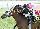 Skyring won the 2014 Mervin H. Muniz Jr. Handicap.