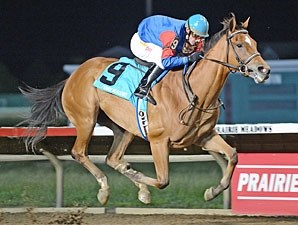 Hitechnoweenie wins the 2013 Panther Stakes.