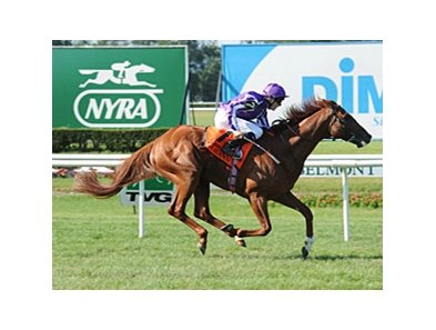 "Cape Blanco defeated Gio Ponti by 2 1/4 lengths in the Man o' War.<br><a target=""blank"" href=""http://www.bloodhorse.com/horse-racing/photo-store?ref=http%3A%2F%2Fpictopia.com%2Fperl%2Fgal%3Fprovider_id%3D368%26ptp_photo_id%3D9591219%26ref%3Dstory"">Order This Photo</a>"