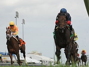 New Normal wins the 2010 Natalma.