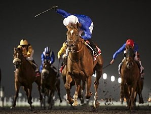Hunter's Light wins the 2013 Al Maktoum Challenge Round III.