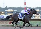 Handsome Mike