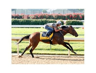 Mine That Bird works four furlongs at Churchill Downs with Jamie Theriot in the saddle.