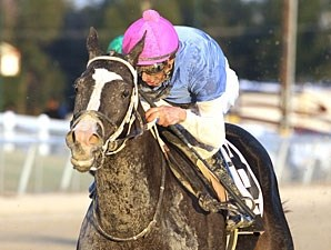 Westernator wins the 2012 Louisiana Legacy.