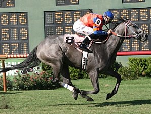 Red Hot Buddha wins the 2009 Princess Stakes.