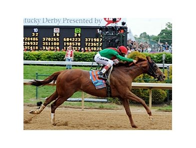 "Animal Kingdom in the 2011 Kentucky Derby.<br><a target=""blank"" href=""http://www.bloodhorse.com/horse-racing/photo-store?ref=http%3A%2F%2Fpictopia.com%2Fperl%2Fgal%3Fprovider_id%3D368%26ptp_photo_id%3D9520029%26ref%3Dstory"">Order This Photo</a>"