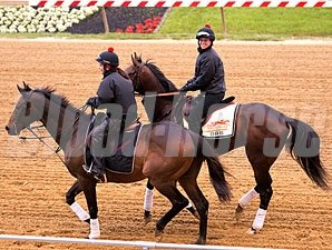 Orb at Pimlico - May 15, 2013